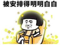 鑫享人生1.png